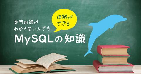 専門用語がわからない人でも理解できるMySQLの知識
